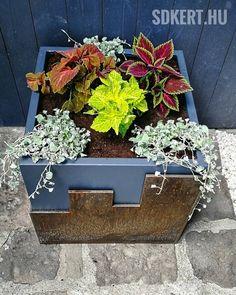 #gardendesigner #spiegelakos #gardener #kertepito #gardening #kertépítés #corten #nemesacél #nemesrozsda #novenytarto #díszcsalán 🌿 Planter Pots, Pink, Instagram, Pink Hair, Roses