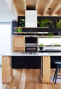 Kitchen | Wooden Box House by Moloney Architects | est living