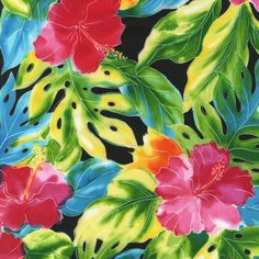 I have been looking for the name of this fabric forever!  Now I just need to find it in stock!   Splash Of Color EWC-12442-2 BLACK  Robert Kaufman Fabrics