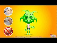 What are Germs -Viruses & Bacteria