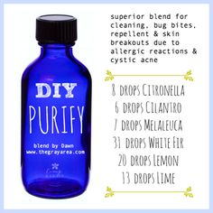 13 Ways to Use DIY Purify Blend