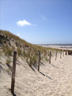 Strand, Callantsoog, Noord-Holland. The Netherlands
