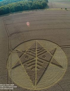 Crop Circle at Ackling Dyke (2), nr Sixpenny Handley, Dorset, United Kingdom. Reported 22nd August 2014