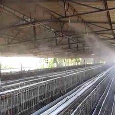 Con nebulizadores y una presión de agua adecuada se consiguen unas gotas micronizadas en el interior de las granjas, que se mantienen más tiempo flotando en el aire, absorbiendo calor y humidificando el ambiente, hasta evaporarse totalmente antes de entrar en contacto con la cama.