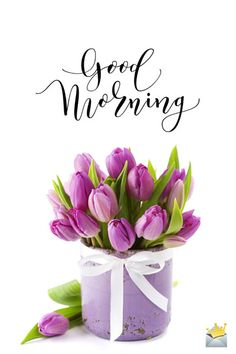 Our installment of original good morning pictures is one of the best ways to help everyone start their day on the sunny side. Good Morning Beautiful Pictures, Beautiful Morning Messages, Good Morning Images Flowers, Good Morning Roses, Good Morning Picture, Morning Pictures, Happy Saturday Pictures, Good Morning Boyfriend Quotes, Cute Good Morning Quotes