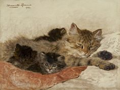 Dozing Cat with Her Kittens | oil painting, 1903 by Henriëtte Ronner-Knip, (Dutch 1821-1909)