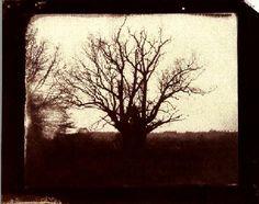 Calotipo ou Talbotipo é nome de outra tecnica inventada naquela época do nascimento da fotografia. Introtuzida por William Henry Fox Talbot em 1841, as imagens produzidas eram mais baratas do que as produzidas pelo Daguerreótipo e eram muito apreciadas pois tinham uma imprecisão nos detalhes que lhes conferia um carácter artístico.
