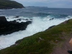 Cape Spear Waves