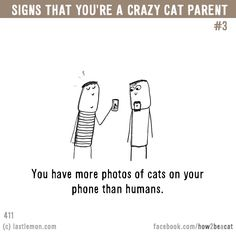 Signs that you're a CRAZY CAT PARENT #3: You have more photos of cats on your phone than humans.