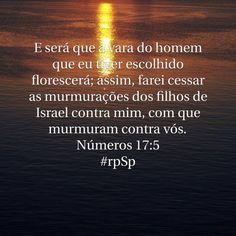 http://bible.com/212/num.17.5.ARC