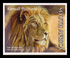 South Africa [self adhesive] Big 5 booklet / Lion Small Wild Cats, Big Cats, Year Of The Tiger, Kingfisher Bird, Baboon, All Nature, African Animals, African History, My Animal