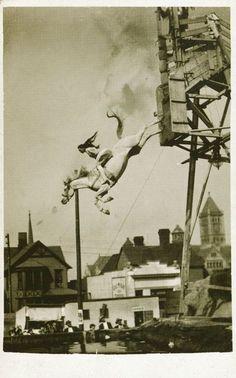 Crazy Vintage Horse Dive Photo