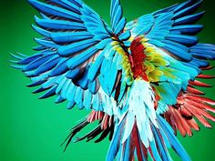 VISIONAIRE TURNS 25 TODAY!!! Sølve Sundsbø captured a Brazilian Parrot in flight for Visionaire 62 RIO. The issue came as a lenticular art covered box filled with a specially designed stereo scope to view each double color transparency in 3-D. Solve has been so creative with his contributions, often exploring areas that push him beyond beauty and fashion. @solvesundsbostudio @jameskaliardos #visionaireworld #solvesundsbo #rio #visionaire25th Turning 25, Beyond Beauty, So Creative, Parrot, Exploring, Rio, Birds, Instagram Posts, Flowers