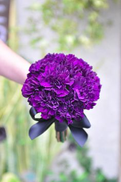 Bride's bouquet of carnations