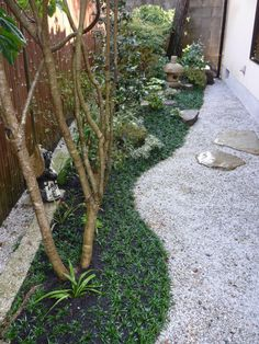 Narrow tsuboniwa (Japanese courtyard garden). Planted border with rocks