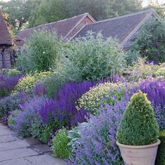 Best Photos english garden cottage Suggestions Gardener is my favorite interest for as long as I can remember. Back Gardens, Outdoor Gardens, Lavender Garden, Purple Garden, Lavender Flowers, Small Flowers, White Flowers, Design Jardin, Garden Architecture