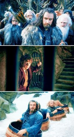 Best movie to grace this earth. I love the look of Thorin and Fili's faces on the bottom picture