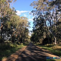 Featuring the #BunyaMountains in #Queensland. Visit now for a truly authentic #alpine #experience! @bigworldsmallpockets www.parkmyvan.com.au #ParkMyVan #Australia #Travel #RoadTrip #Backpacking #VanHire #CaravanHire