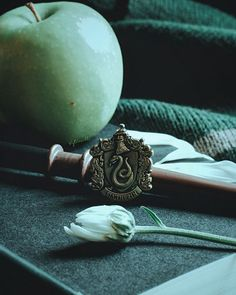 Mundo Harry Potter, Draco Harry Potter, Harry Potter Pictures, Slytherin House, Slytherin Pride, Hogwarts Houses, Draco Malfoy Aesthetic, Slytherin Aesthetic, Harry Potter Wallpaper