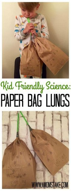 Kid Friendly Science: Paper Bag Lungs - - Kid Friendly Science: Paper Bag Lungs Science This looks like fun, and Know Yourself sounds like an easy and fun way to get kids learning! A subscription would make a great gift! Kid Science, Human Body Science, Human Body Activities, Human Body Unit, Preschool Science, Science Lessons, Teaching Science, Science Activities, Science Projects