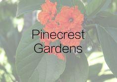 Pinecrest Gardens - ONE Sotheby's International Realty Pinecrest Gardens