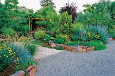 Good soil and smart plants lead to xeriscaping success