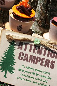 Camping-themed party....awesome!