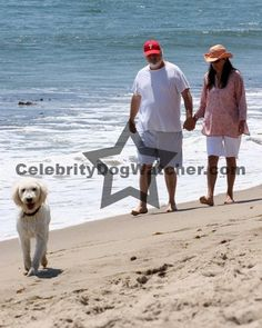 •Rob Reiner  with his wife Michele Singer and dog• married for 34 years
