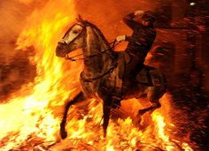 ~from the Guardian's Best Photos of 2012 ~ Horse runs through fire by Jasper Juinen. On St Anthony's Eve in Spain, horses are ridden through fire. St Anthony is the patron saint of animals and the horses are kept wet so they are not hurt.