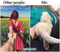 "320 Likes, 6 Comments - Clemence ❄ (@captain_grizlou_the_ferrets) on Instagram: ""My Life! 😊👌🏻 #ferret #ferrets #ferretmom #ferretfun #ferretism #ferretrules #ferretnation…"""