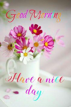 Good Morning Good Night, Good Morning Quotes, Good Day, Nice, Gud Morning Images, Be Nice, Good Morning, Buen Dia, Hapy Day