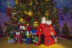 Charlie Brown And The Great Exhibit Decorating With Christmas Lights Tree Themes