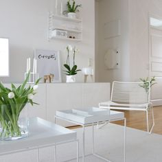 white + green living