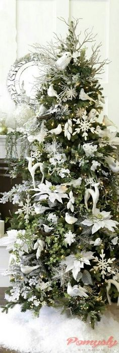 Gorgeous White Poinsettia's and Deer