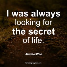 Who else is looking for the secrets of life?
