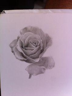 #blackandgrey #realism #rose