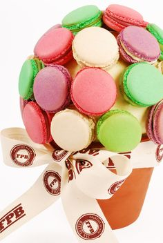Mother's Day Macaron Flower Pot by Payard - A bright Lemon Basil that is freshly tart and lightly sweet, a classic Vanilla Bean, a delicately floral Rose Lychee and very berry Cassis Violet.