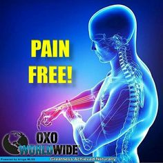 What is it be able to live pain free? Learn about immediate pain relief at www.AdamsMiracles.com and learn how the holograms work!
