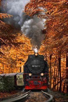 landscape, train, and autumn image