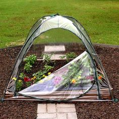 Shop for Greenhouses in Garden Center. Buy products such as King Canopy 10 ft x 10 ft Greenhouse at Walmart and save. Aquaponics Fish, Aquaponics System, Hydroponics, Backyard Aquaponics, Growing Tomatoes, Growing Vegetables, Dried Tomatoes, Cherry Tomatoes, Herb Garden