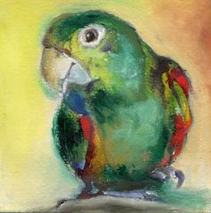 ARTFINDER: Her name is Mari by Nancy Moniz Charalambous - Beautiful, vibrant and Colourful Brazilian Parrot called Mari. Painted with oils and ink Small Paintings, Paintings For Sale, Parrot Painting, Watercolor Bird, My Drawings, Find Art, Framed Artwork, Giclee Print, Budgies