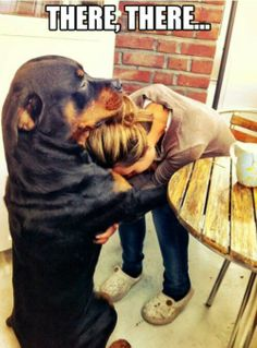Im obsessed with Rotties, Pits...any misunderstood breed.