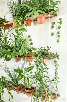 DIY Indoor Vertical Garden - Jessica Welling Interiors - Build a unique indoor DIY vertical garden for your faux plants. This hanging garden living wall is the perfect thing to add Boho style to your home or apartment. Source by jessicawellinginteriors - Room With Plants, House Plants Decor, Hang Plants On Wall, Plants On Walls, Best Plants For Bedroom, Living Wall Planter, Wall Planters, Concrete Planters, Diy Living Wall