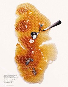"""Bee Good"" by Alique for Vogue Netherlands November 2013"