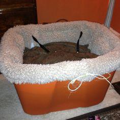 1000 images about little buddy friends on pinterest dog car seats dog car and dog car seat. Black Bedroom Furniture Sets. Home Design Ideas