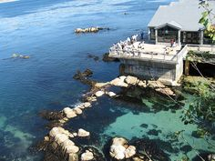 The Monterey Bay Aquarium is situated right on the Monterey Bay...with such a spectacular setting, it's hard to determine which views are more beautiful - the ones in the exhibits or the ones outside!