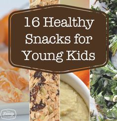 Healthy Snack Ideas for Toddlers | Family Gone Healthy