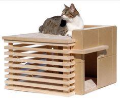 Cat House or litter box