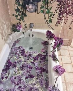 Uploaded by Find images and videos about beautiful, flowers and green on We Heart It - the app to get lost in what you love. Flower Aesthetic, Purple Aesthetic, Ritual Bath, Deco Nature, Dream Bath, Relaxing Bath, My New Room, Aesthetic Pictures, Beach House Decor