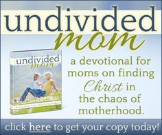 Devotional Bible study for moms from the book of Luke. Available Oct 7. I got a sneak peak and it looks awesome! [KINDLE & PDF VERSIONS] http://kaysepratt.com/product/undivided-mom?ap_id=sagegarden